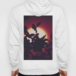 Bird of Paradise Moon Hoody
