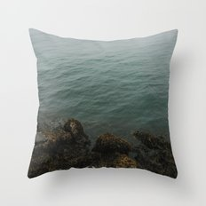 Fog Is In The Air Throw Pillow