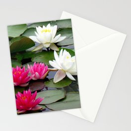 Water Lilies - Pink and White Stationery Cards