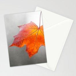 Velvet Autumn Stationery Cards