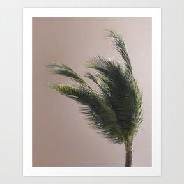 Nude Beach - A photograph of a palm tree against a peach sky Art Print