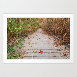 Autumn Marsh Boardwalk Art Print