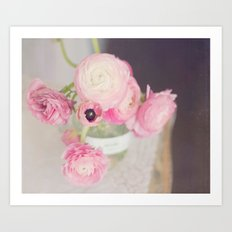 Pale Pink Ranunculus Art Print