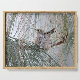 Pine Veil Nesting Serving Tray