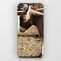 eeyore iPhone & iPod Skins featuring Eeyore by Amber Heagerty