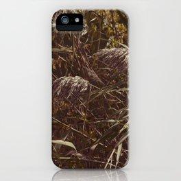 Brown grass iPhone Case