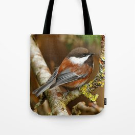 Chestnut-Backed Chickadee in the Cherry Tree Tote Bag
