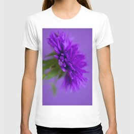 Close-up image of the flower Aster on purple background T-shirt