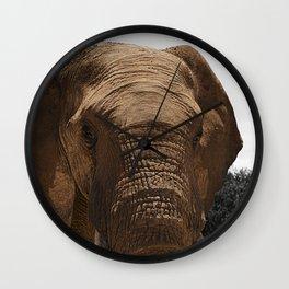African Wildlife: Elephant 1 Wall Clock