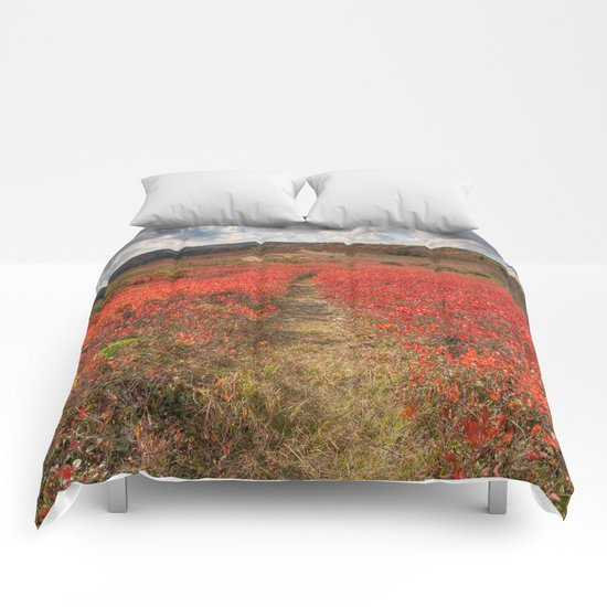 Autumn Huckleberry Trail Comforters