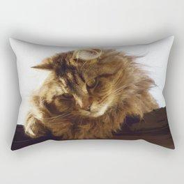 Curious Maine Coon Cat Rectangular Pillow