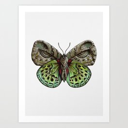 Green steampunk butterfly Art Print