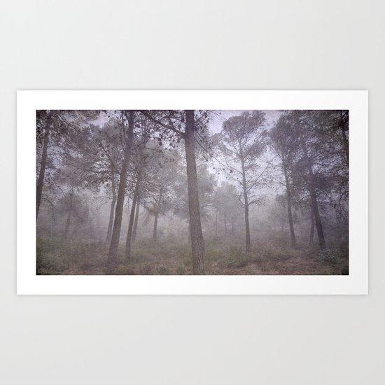 Secret of the misty forest Art Print