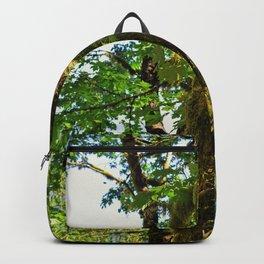 Making Magic Backpack