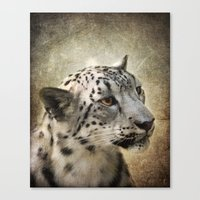 snow leopard Canvas Prints featuring Snow Leopard by Jai Johnson