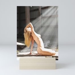 Bathed in Sunlight (1) Mini Art Print