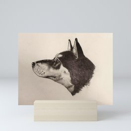 Shiba Stare Mini Art Print