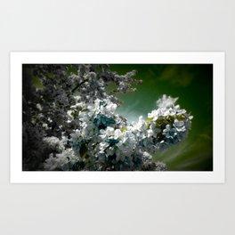 Flowers Teal Green White Art Print