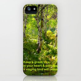 Aspens and Chinese Proverb iPhone Case