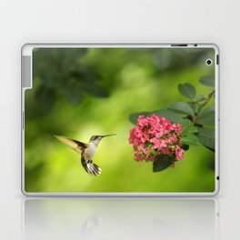 Hummer in Flight Laptop & iPad Skin
