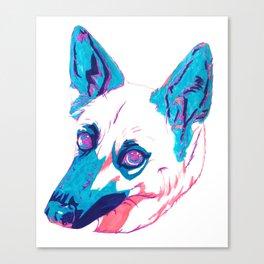 German Shepherd Husky Mix Canvas Print