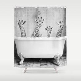 Four Giraffes in a Bath (bw) Shower Curtain