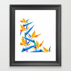 Bird of Paradise V2 Society6 #decor #buyart Framed Art Print