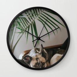 Dog by Jake Noren Wall Clock