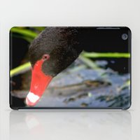 black swan iPad Cases featuring Black Swan by Chris' Landscape Images & Designs