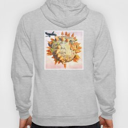 Low Poly Earth Hoody