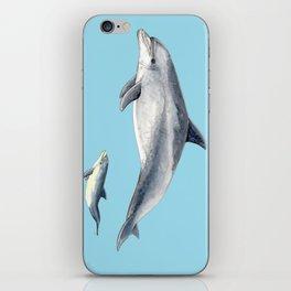 Blue Bottlenose dolphin iPhone Skin