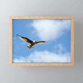 Soaring Seagull Framed Mini Art Print