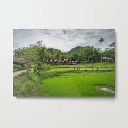 Toraja Indonesia Metal Print