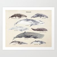 whales Art Prints featuring Whales by BySamantha | Samantha Ranlet