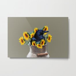 Raven in milk can with sunflowers Metal Print