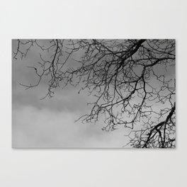 In my Veins NO5 Canvas Print