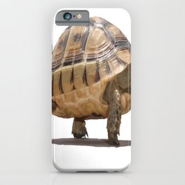Marching Baby Tortoise Cartoon Vector Isolated iPhone Case