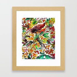 Cinnamon Dove Framed Art Print