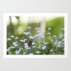 forget me not. Art Print