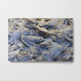 Dried Fish Metal Print