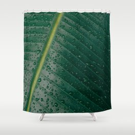 Leafy drops Shower Curtain