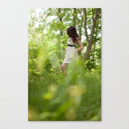 20110528-3815 Canvas Print
