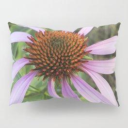 Purple Coneflower Pillow Sham