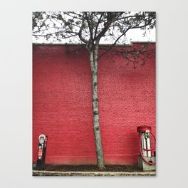 True Red Canvas Print