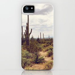Under Arizona Skies iPhone Case