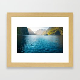 Morning sun glow and dolphins at Milford Sound Framed Art Print