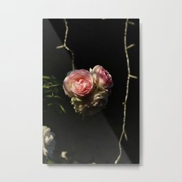 Roof's rose Metal Print