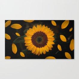 Sunflower yellow green Canvas Print