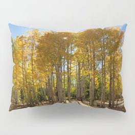 Autumn Blaze outside of Crested Butte, Colorado for #Society6 Pillow Sham