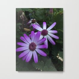 A Sniff of Purple Metal Print